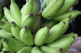 未熟のバナナ.jpg