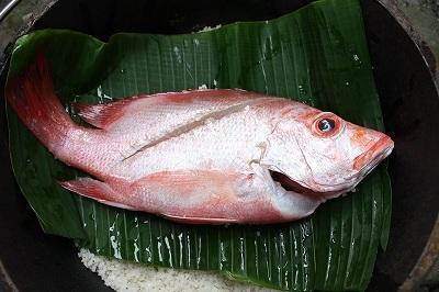 赤い魚.jpg