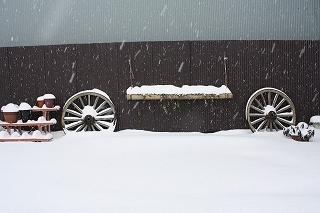 雪の画像 004.jpg