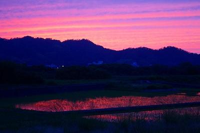 鳥取地震雲2.jpg